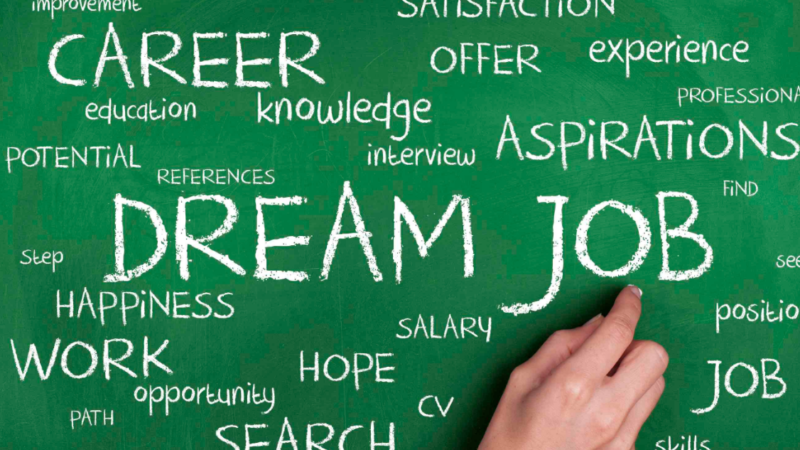 Top Tips To Secure The Career Of Your Dreams