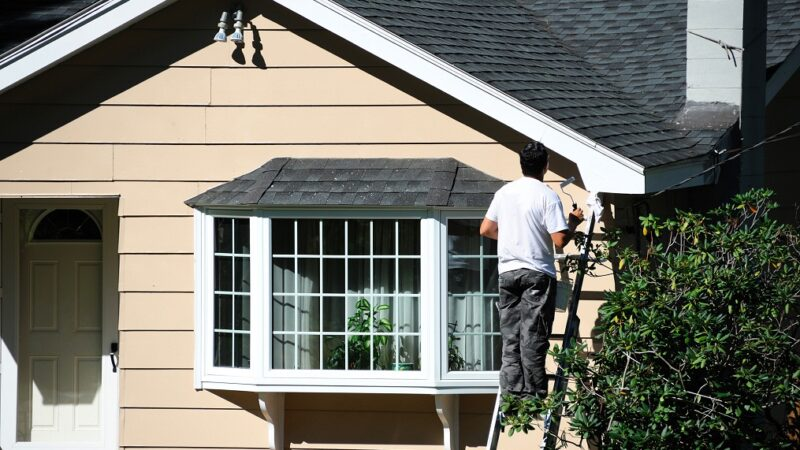 Painting Companies: How to Choose the Best One